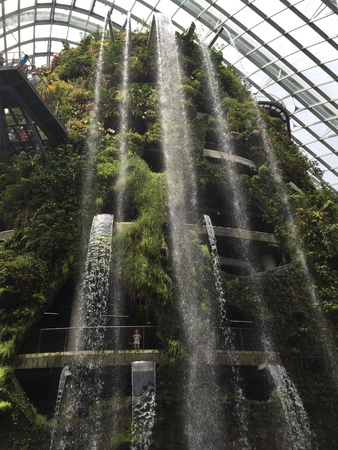 Manmade waterfall from the top through the plants in Gardens by the bay Singapore