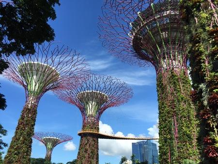 Ondertekende toren van Singapore bij Tuinen door de Baai tijdens dagtijd