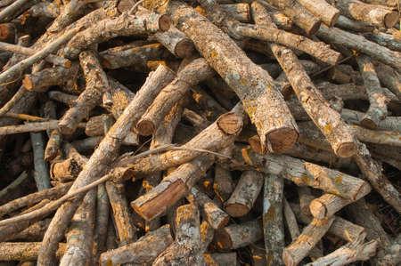 Stow of firewood Фото со стока