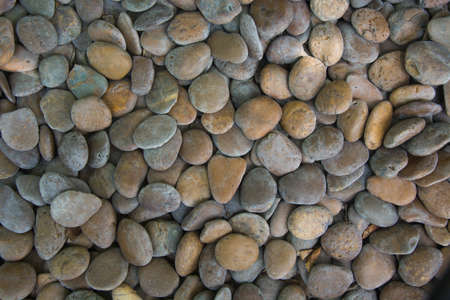 Pattern of gravel background with different shape photo