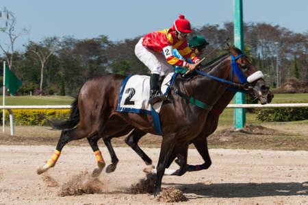 futurity: Jockey and horse racing in track