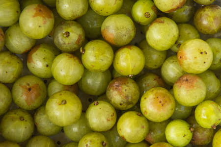 india food: Close up of fresh indian gooseberry