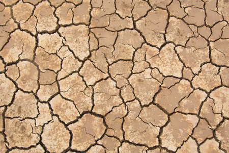 soil texture: Dry soil crack background texture Stock Photo