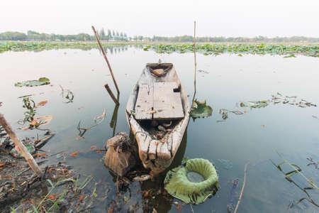 riverside trees: wooden boat on river