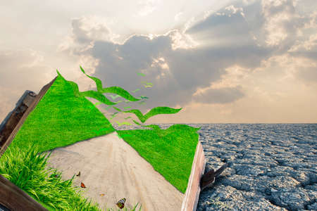 dreamland: illustration of open book with green firld and road on dry land,Fantasy world Stock Photo
