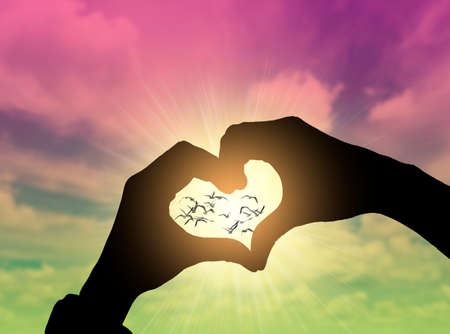 Heart shape hand gesture with blue sky Banque d'images