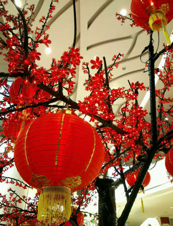 decoration: Decoration of Chinese lamps for the Chinese New Year celebration