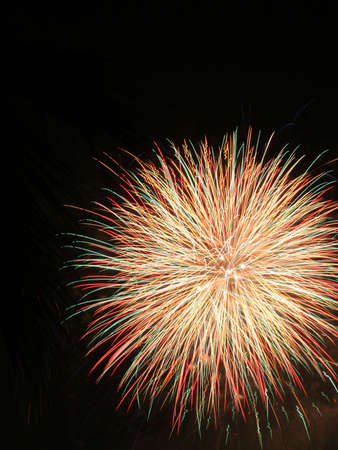 Fireworks Display 3 photo