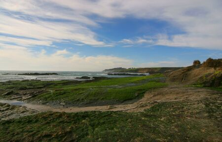 picturesque view of coast line with wind swept clouds in a blue sky of pebble beach California Stock Photo - 319483