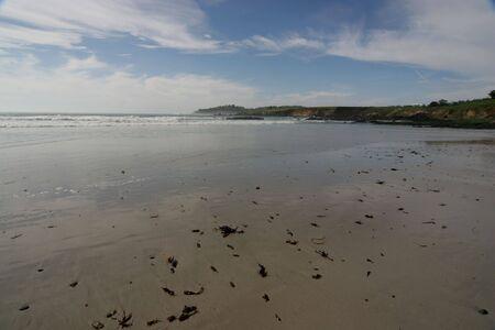 beautiful scenic view of pebble beach California Stock Photo - 319484