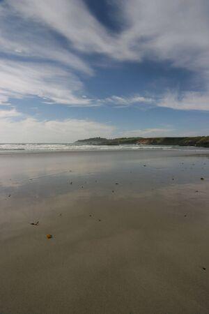 vertical scenic view of pebble beach California Imagens