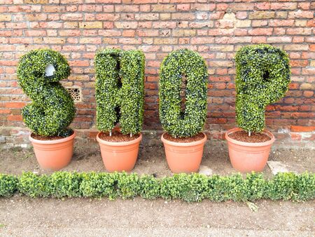 creative: Shop letters in pots against a brick wall