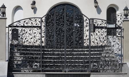 wonderful modern metal gate with leaf as decoration photo