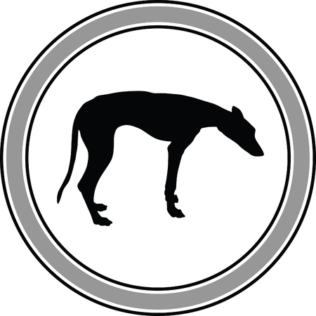 eskimo dog: greyhound