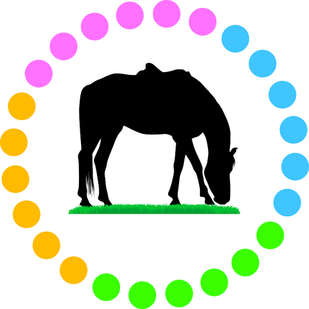 rein: horse