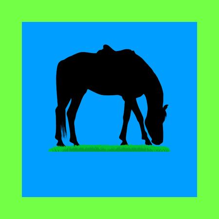 bridle: horse