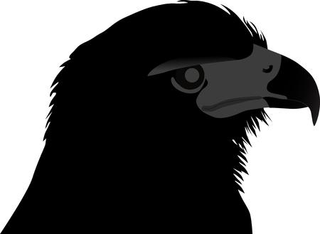 head of the eagle silhouette vector Illusztráció