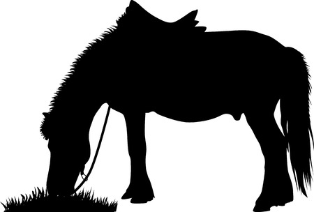 horse with saddle grazing grass silhouette vector