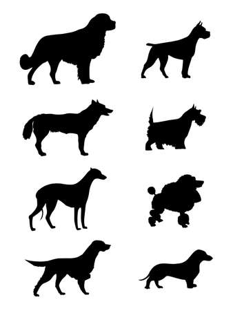 boxer dog: dogs silhouette