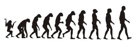 hominid: evoluzione umana