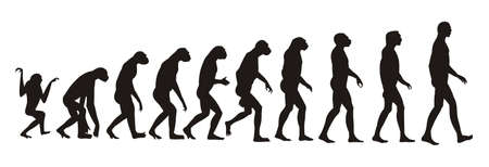 australopithecus: human evolution Illustration