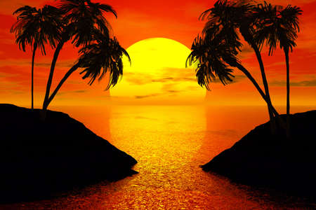 exotic gleam: sunset with palm tree