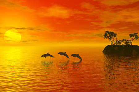 dolphin jumping: dolphins with tropic sunset behind