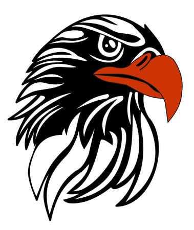 bald head: eagle head illustration vector file