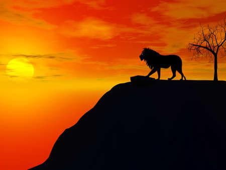 lion silhouette: lion silhouette illustration Stock Photo