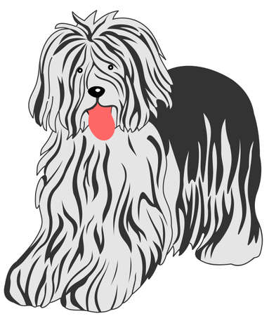 sheepdog: bobtail dog vector illustration