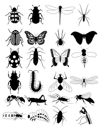 bug silhouette vector illustration