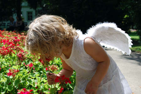 little angel and flower Stock Photo - 5364652