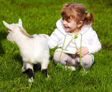 child and little goat photo