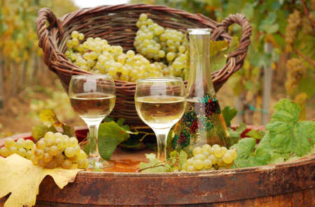 white wine  photo