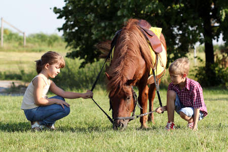 little girl and boy play with pony horse  photo