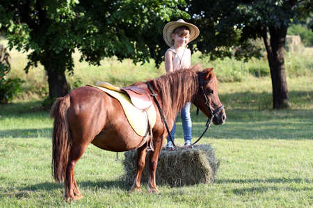 little girl with cowboy hat and pony horse pet  photo