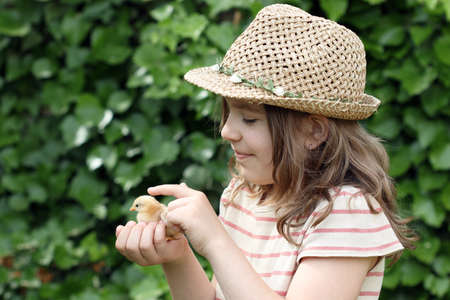 cute young farm girl: happy little girl holding cute little chicken Stock Photo