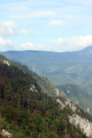 serbia: Tara mountain landscape Serbia Europe