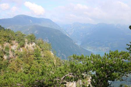 serbia landscape: Tara mountain west Serbia landscape
