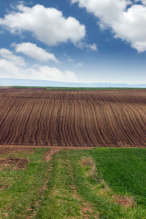 brown and green plowed field landscape Stock Photo