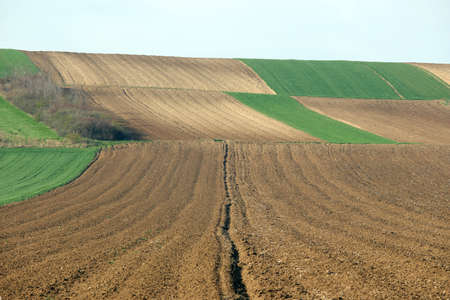 Plowed field  agriculture landscape Voivodina Serbia Stock Photo