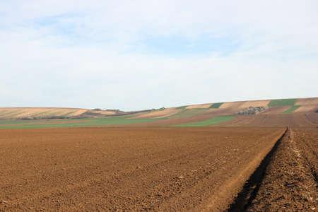 Plowed field landscape agriculture Voivodina Serbia