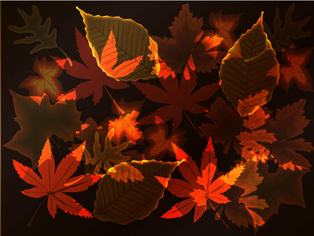 pleasant: Pleasant abstract background drawing on autumn subjects, red autumn leaves against a dark background. Illustration