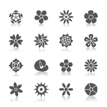 morning glory: Flowers Icons