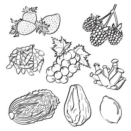 Fruit and Vegetables Set Illustration