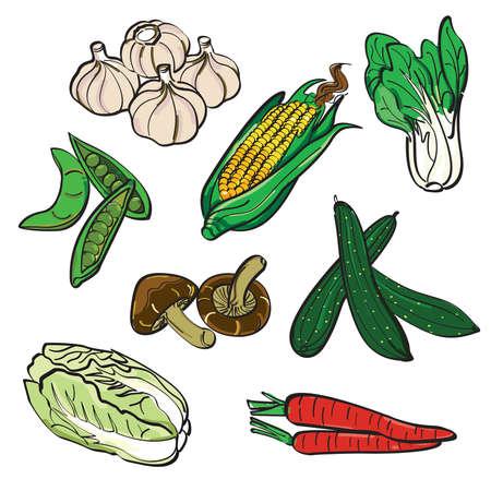 Vegetable Color Set