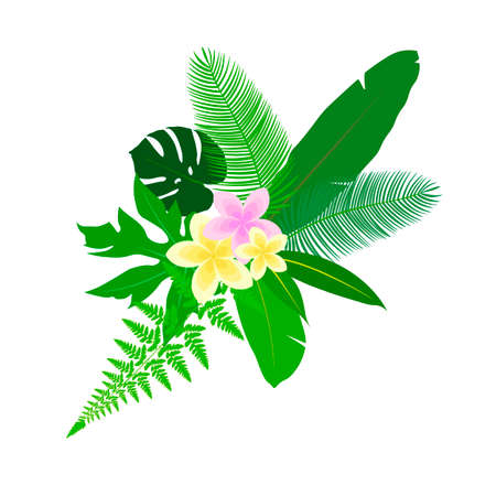 tree isolated: leaves tropics icon