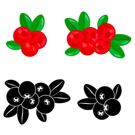 Cranberry fruit bunch cartoon icon. Ripe red berry of cranberry fruit with green branch and leaves