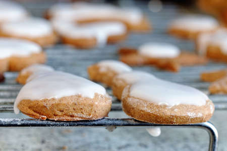 Homemade iced gingerbread biscuits / cookies on a cooling rack Stock Photo - 4287713