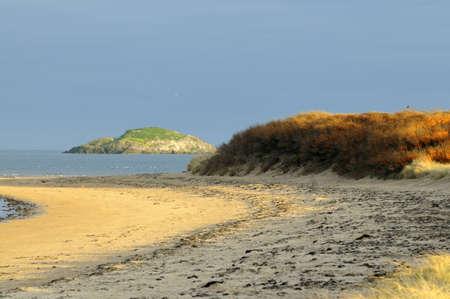 Yellowcraig beach photo